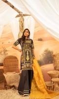 bin-ilyas-embroidered-luxury-lawn-2020-19