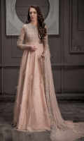 bridal-wear-shadi-valima-2019-20