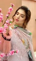 mahajal-by-gull-jee-2019-9