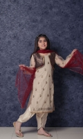 nargis-shaheen-girls-dresses-2020-13