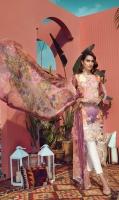 rajbari-luxury-lawn-2019-5