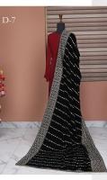 rubaiyat-embroidered-velvet-shawl-2021-5
