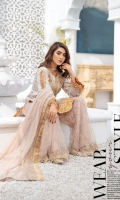 areesha-luxury-chiffon-volume-10-2021-8