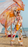ayesha-ibrahim-spring-2019-3