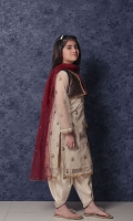 nargis-shaheen-girls-dresses-2020-14