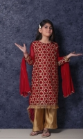 nargis-shaheen-girls-dresses-2020-3
