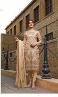 rana-arts-fancy-embroidered-chiffon-2021-10