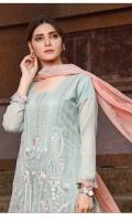 rana-arts-fancy-embroidered-chiffon-2021-17