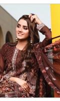 rana-arts-fancy-embroidered-chiffon-2021-19