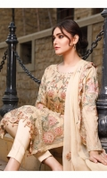 rana-arts-fancy-embroidered-chiffon-2021-9